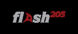 logos_flash_6