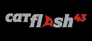 logos_flash_8